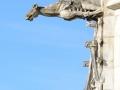 2012-09-16_646 amboise gargoyle RESIZE
