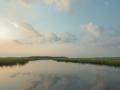 2012-07-01 pine island marsh RESIZE