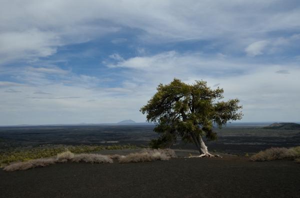 20130503 533 craters cinder mt panorama_01
