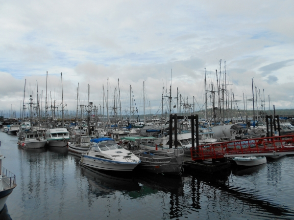 20130829 4455 campbell river fishermans wharf_01