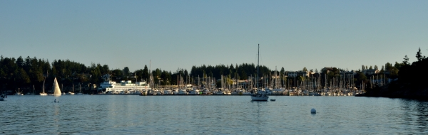 20130912 4445 friday harbor_01