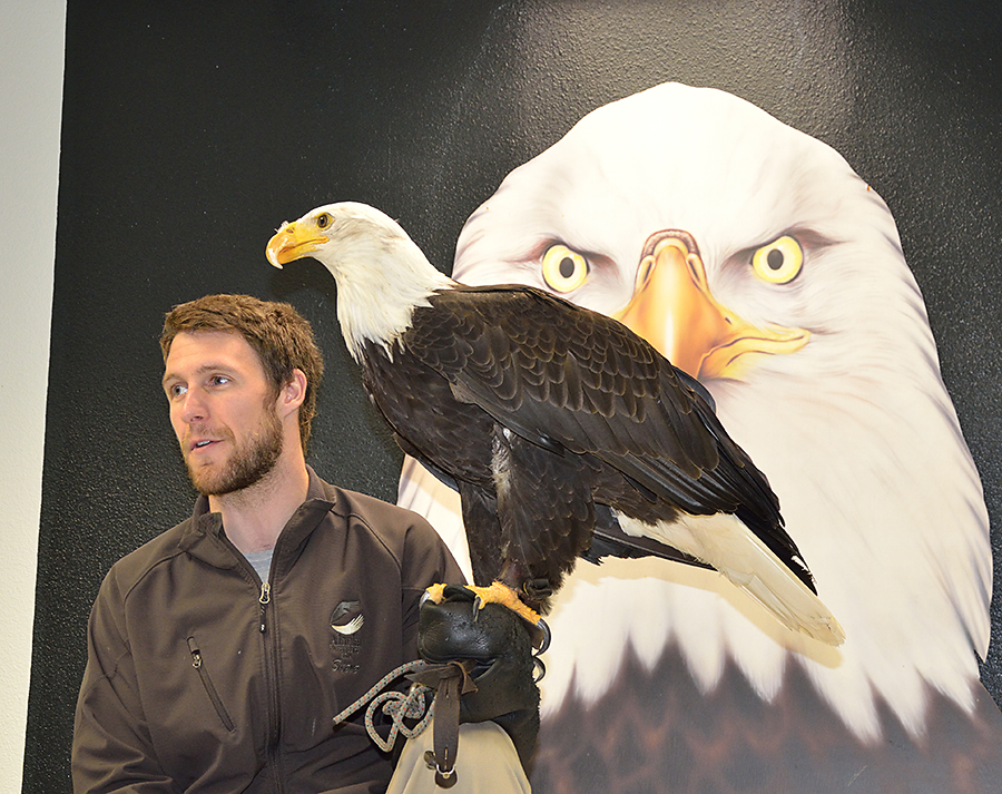 20140619 8898 sitka raptor center steve and eagle psr