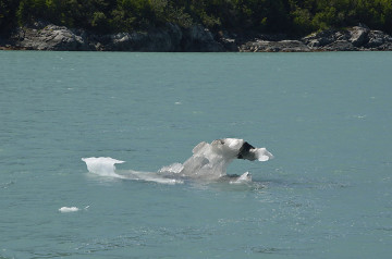 20140627 9441 glacier bay bergy bit psr