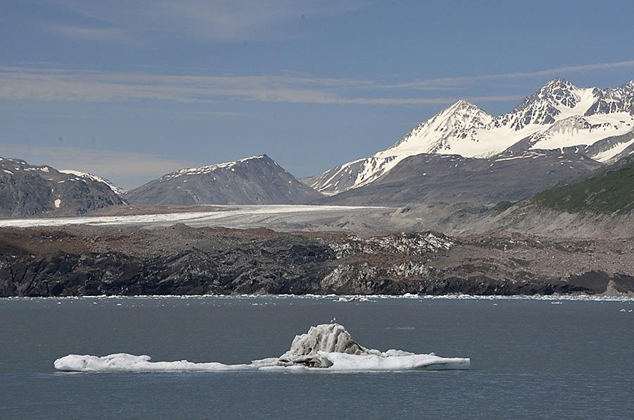 20140627 9454 grand pacific glacier psr