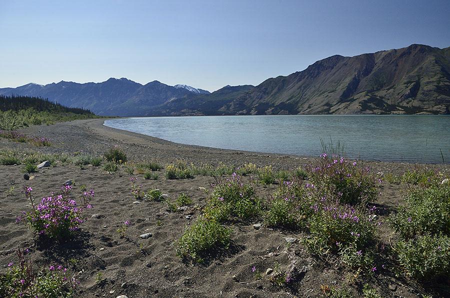 20140722 726 kluane np glacier lake psr