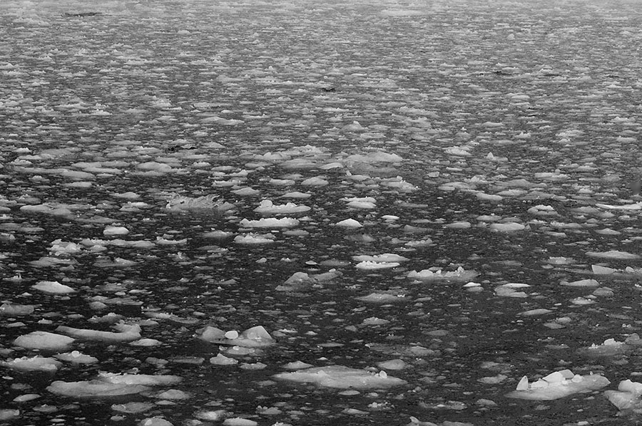 20140827 2477 kenai fjords pack ice bw r