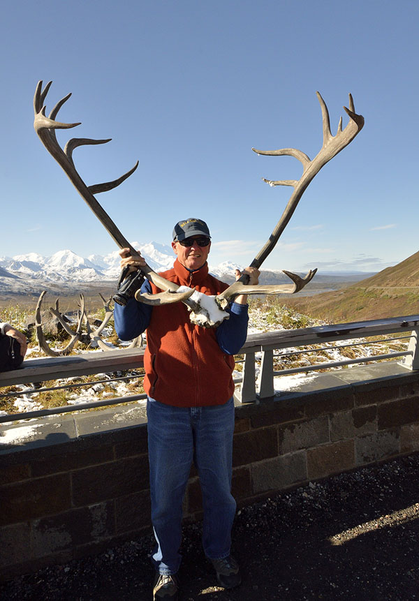 20140830 2031 denali np jim caribou antlers mt mck r
