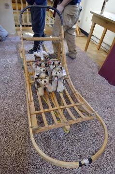 20140830 2056 sled dogs stuffed r