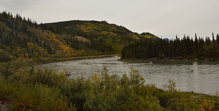 20140901 2758 alaska rr fall color and river r