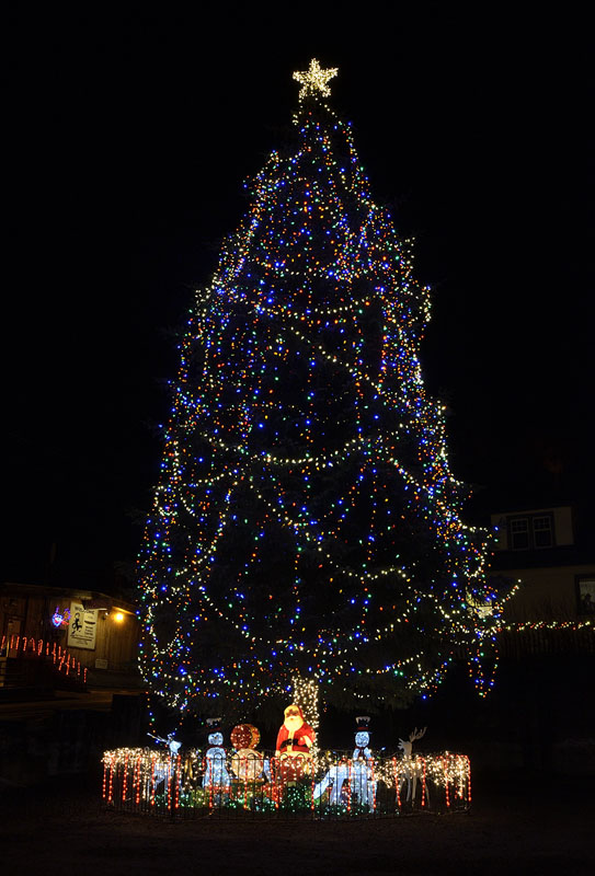 20141217 3956 petersburg christmas tree r