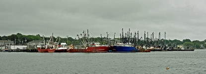 3 new bedford fleet