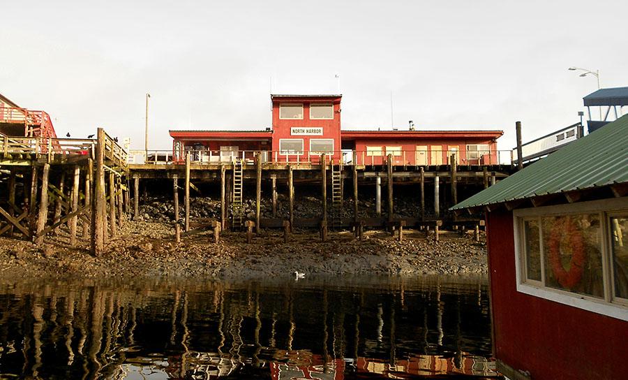 20150215 4349 petersburg grid low tide r
