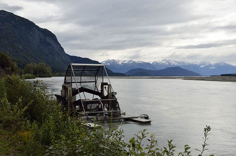 20150901 0365 chilkat river fish wheel r