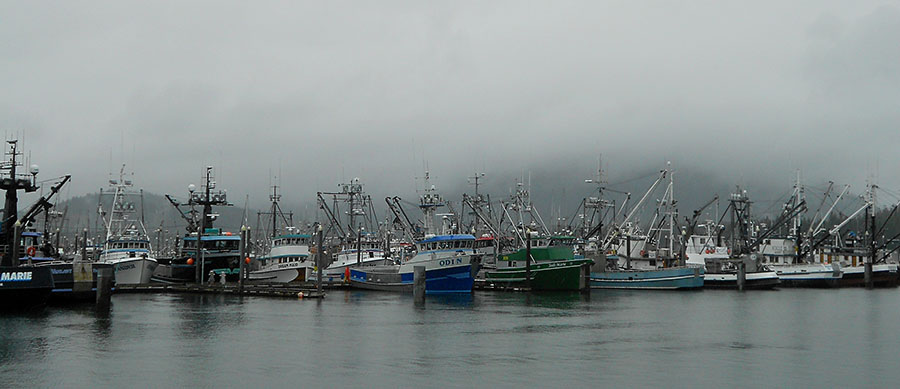 20150927 1809 south harbor fishing fleet r
