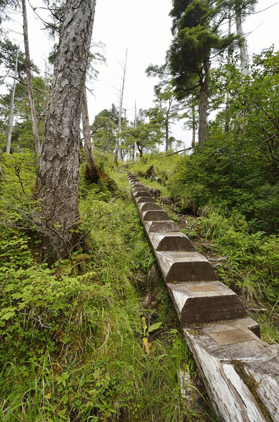 20160805 0524 kalinin log steps 2 r