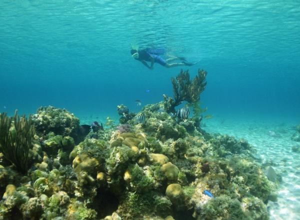 2010 05 25 snorkel scenic RESIZE